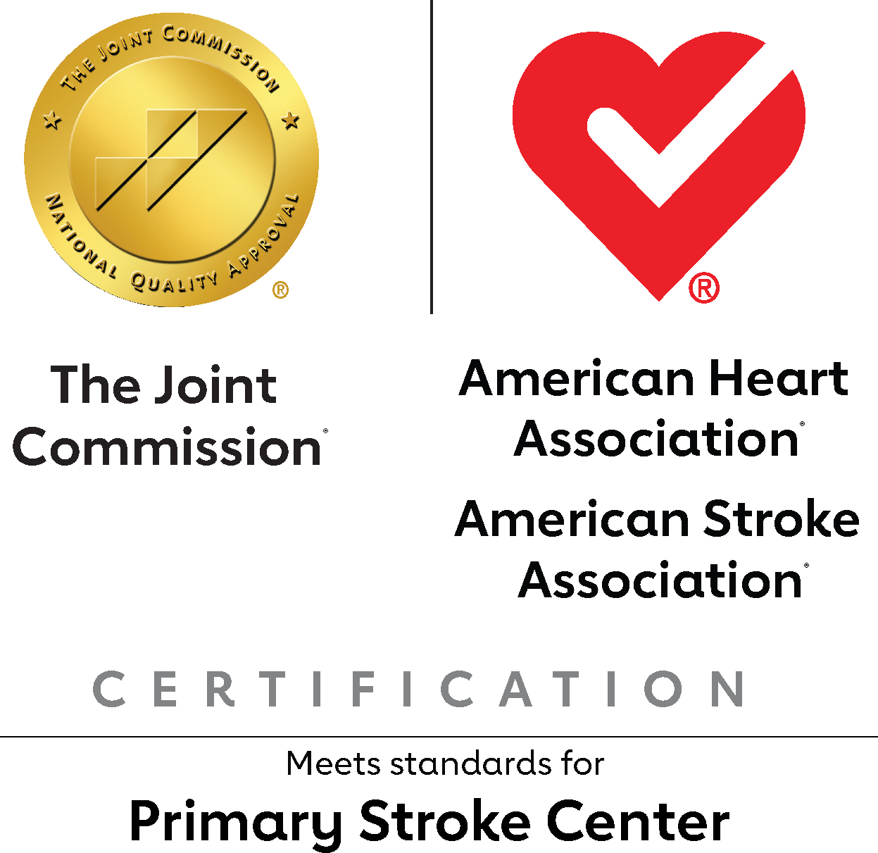 Joint Commission and AHA joint Primary Stroke Icon